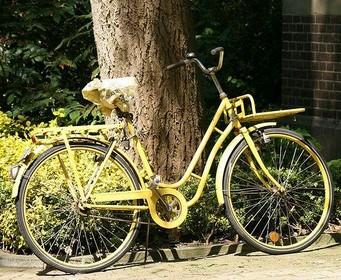 Hilversumse verovert dochters fiets terug van twee fietsendieven: 'Hartslag van tweehonderd'