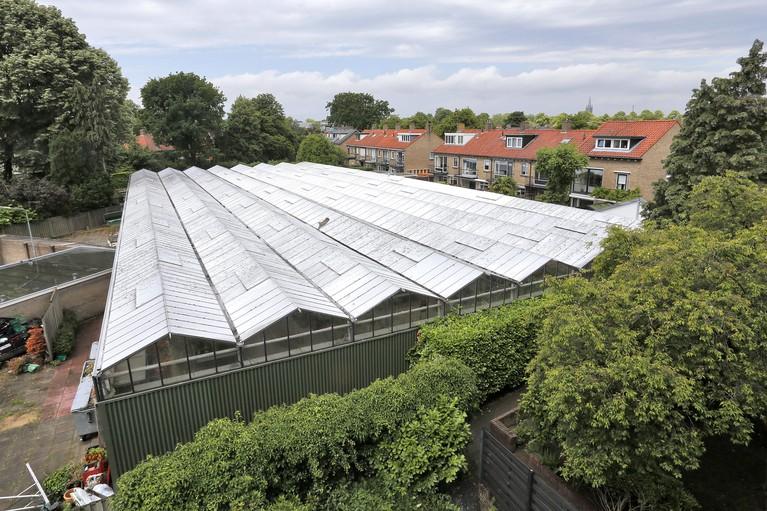 En weg is tuincentrum Gooiersgroen aan de Van Riebeeckweg