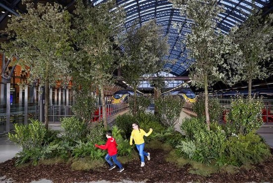 Eurostar laat ook bomen planten