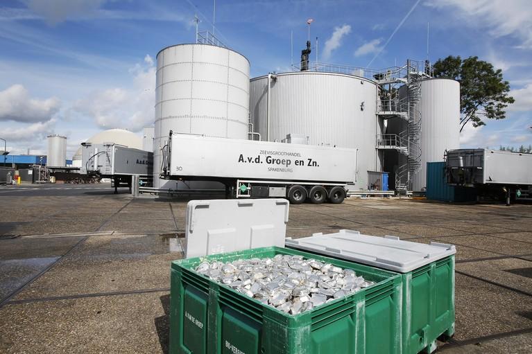 Van de Groep maakt in Bunschoten van rotte vis groen gas