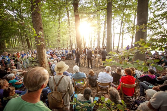 Muzikale magie onder de bomen tijdens festival Wonderfeel