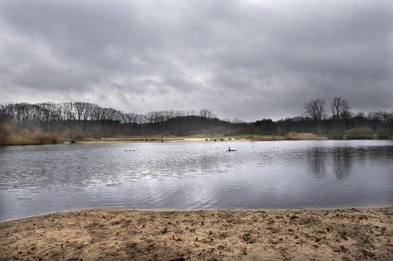 Onderzoek naar vijvers Anna's Hoeve bijna klaar: Snel uitslag over zwemwater