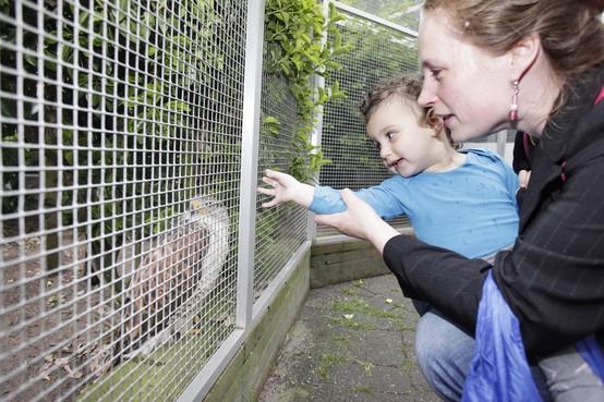 Vogelhospitaal Naarden sluit de deuren nadat de NVWA beslag heeft gelegd op alle medicijnen