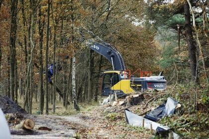 Nu ook petitie tegen bomenkap tussen Hilversum en Hollandsche Rading